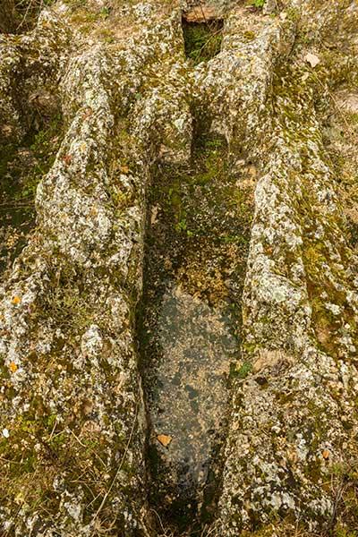 Tumbas de la Necrópolis del s.X