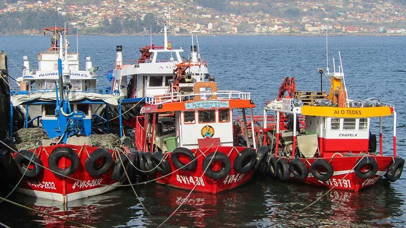 Barcos pesqueros en Cangas