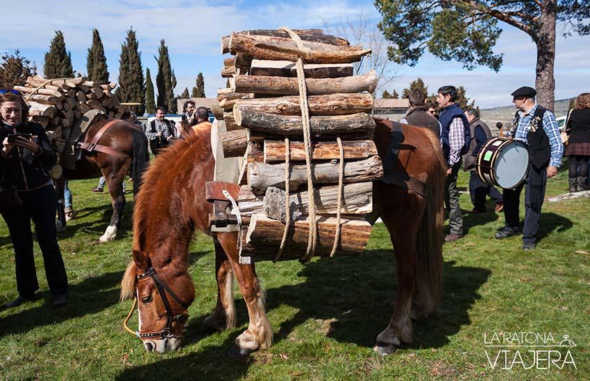 caballo-Gabarreros-2017