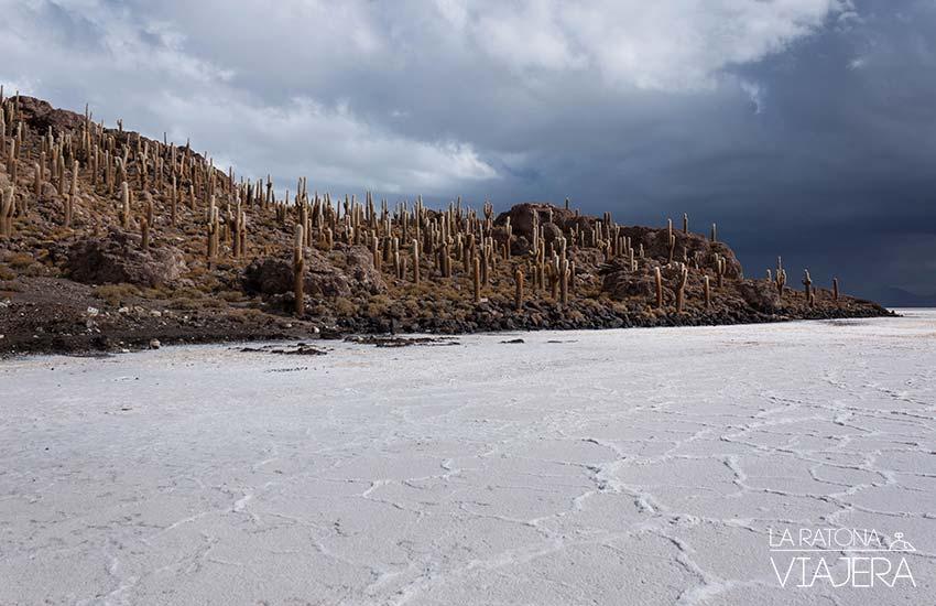 isla-cactus-Salar-Uyuni