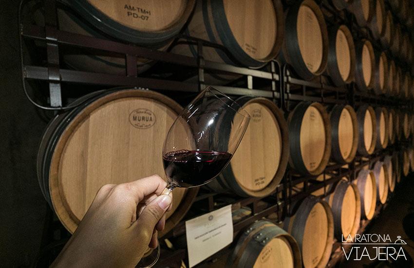 museo-del-vino-pagos
