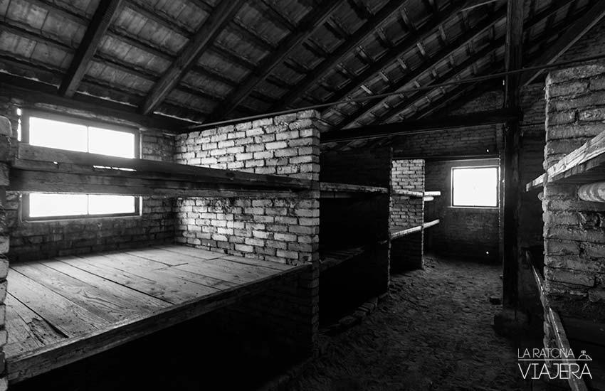 Auschwitz-Birkenau-barracones