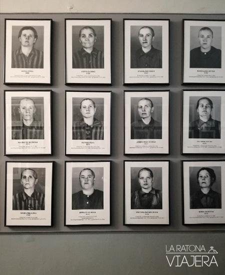 Auschwitz-retratos-mujeres