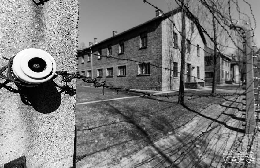 Auschwitz-verjas